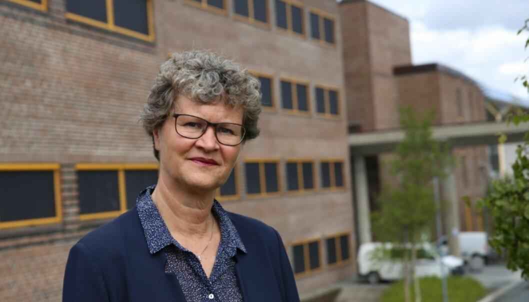 Jusdekan Trude Haugli ved UiT Norges arktiske universitet har ikke søkt om en ny periode i jobben. Foto: Trude HaugsethMoe/UiT