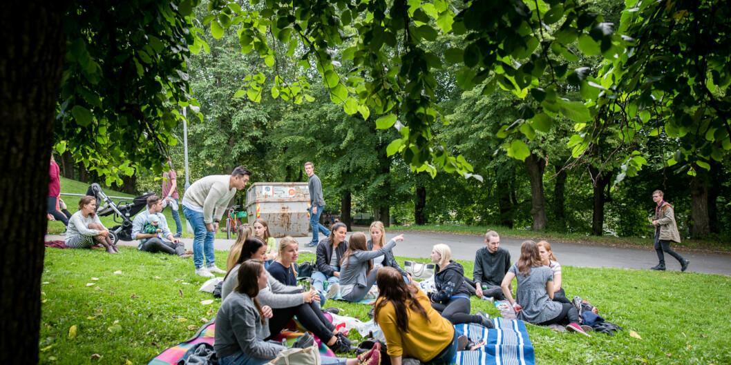 Nye studenter og faddere under grillkonserten på St. Hanshaugen under studiestart. Foto: Skjalg Bøhmer Vold