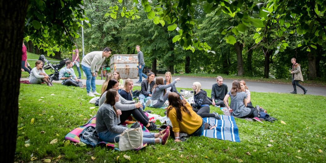Nye studenter og faddere under grillkonserten på St. Hanshaugen i Oslo under studiestart. Foto: Skjalg Bøhmer Vold