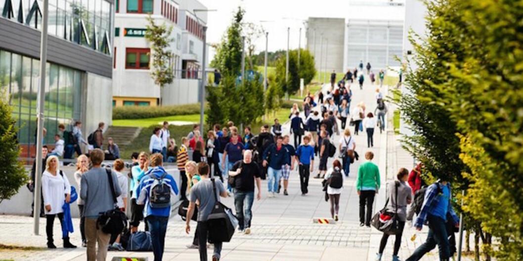 En student ved Universitetet i Stavanger mottok upassende meldinger fra sin professor i vårsemesteret. Foto: Universitetet iStavanger