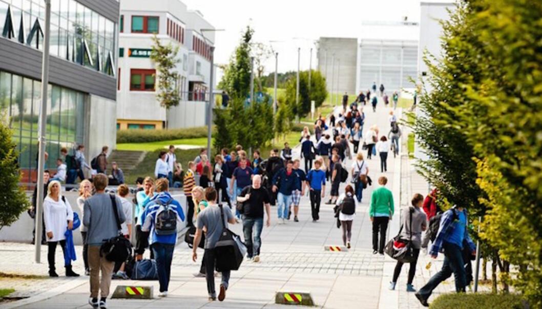 Hvilke signaler er det egentlig Universitetet i Stavanger sender ut til alle kvinner, og særlig de av oss som jobber innenfor akademia? Hvor mye skal vi måtte tåle fra akademisk ansatte, kolleger og andre, spør artikkelforfatteren.
