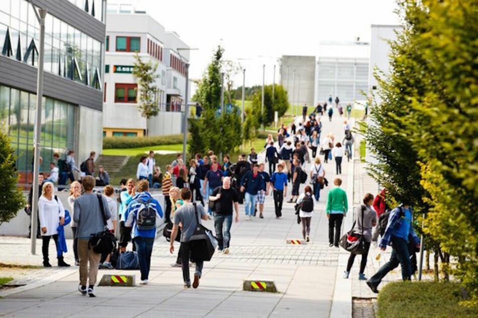 For topp-nivået, representert ved ledere for sentre for fremragende forskning, er vi svært langt fra kjønnsbalanse, skriver innleggsforfatterne. Arkivbilde av blivende akademikere ved studiestart i Stavanger. Foto: UiS