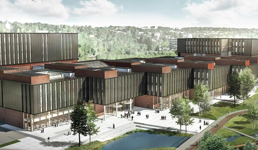Etter planen skal Livsvitenskapsbygget ved UiO stå ferdig om vel seks år - like lenge som åremålet til den nye direktøren.