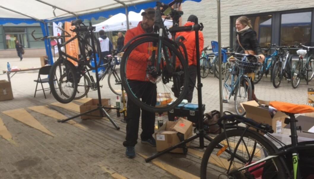 Sykkel skal være den nye normalen for arbeidsreiser i nærmiljøet ved OsloMet, i tillegg til å gå eller ta kollektivtransport. Her fra en sykkelservicedag på universitetet.