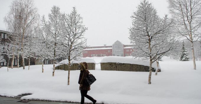Utvidet frist hjalp lite for nye lederjobber i Tromsø