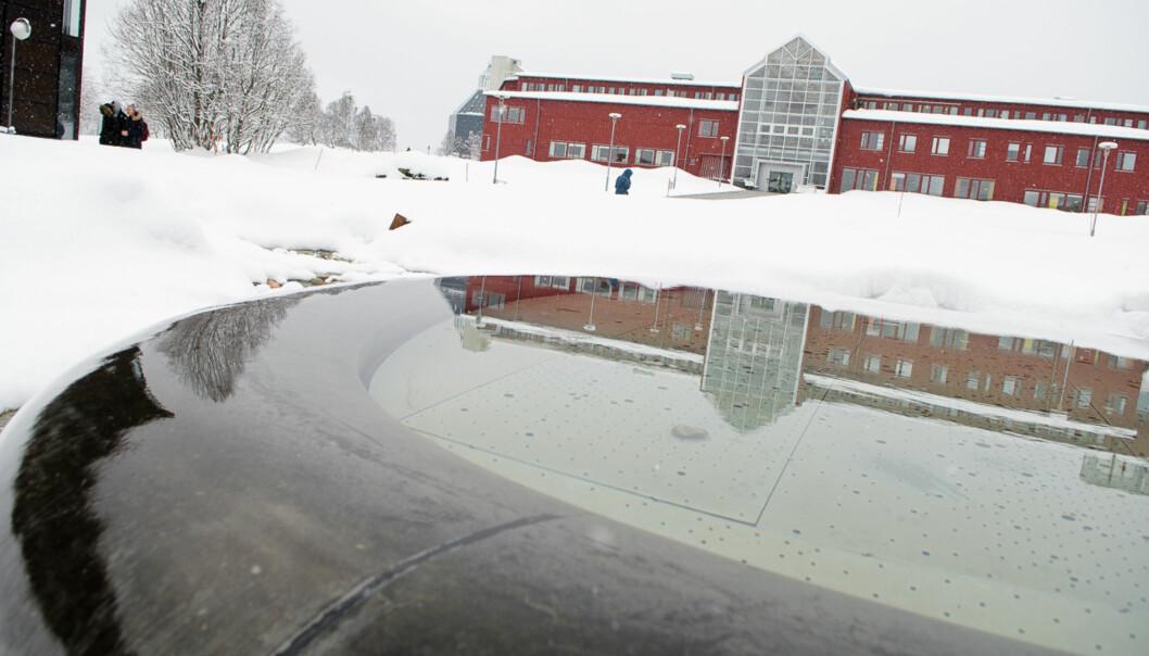 Det kan være arbeidskrevende å utvikle en kultur der fagfellevurdering og kollegaveiledning skal utvikles til en etablert praksis, skriver Kari Riddervold ved UiT Norges arktiske universitet.  Foto: Lars Åke Andersen