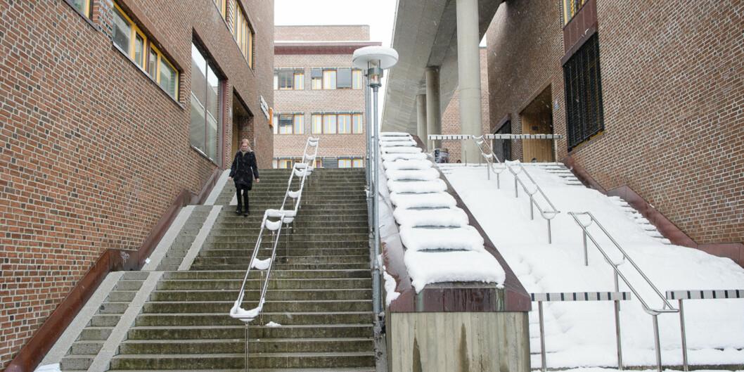 Torsdag ble forslag til fakultetsinndeling på UiT Norges arktiske universitet lagt fram. Foto: Lars Åke Andersen
