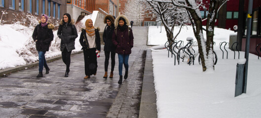 Sju universiteter er i gang med merittering av undervisere