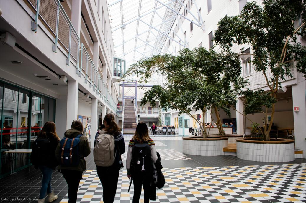UiT Norges arktiske universitet er lengst framme på merittering av undervisere. Foto: Lars Åke Andersen