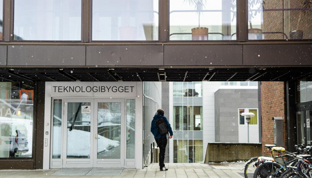 UiT Norges arktiske universitet har lansert en ny handlingsplan for likestilling, mangfold og inkludering. Foto: Lars Åke Andersen