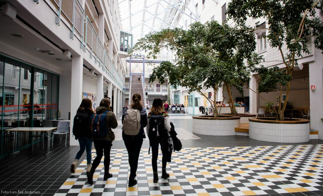 Fra UiT Norgs arktiske universitet, campus Tromsø. Foto: Lars Åke Andersen