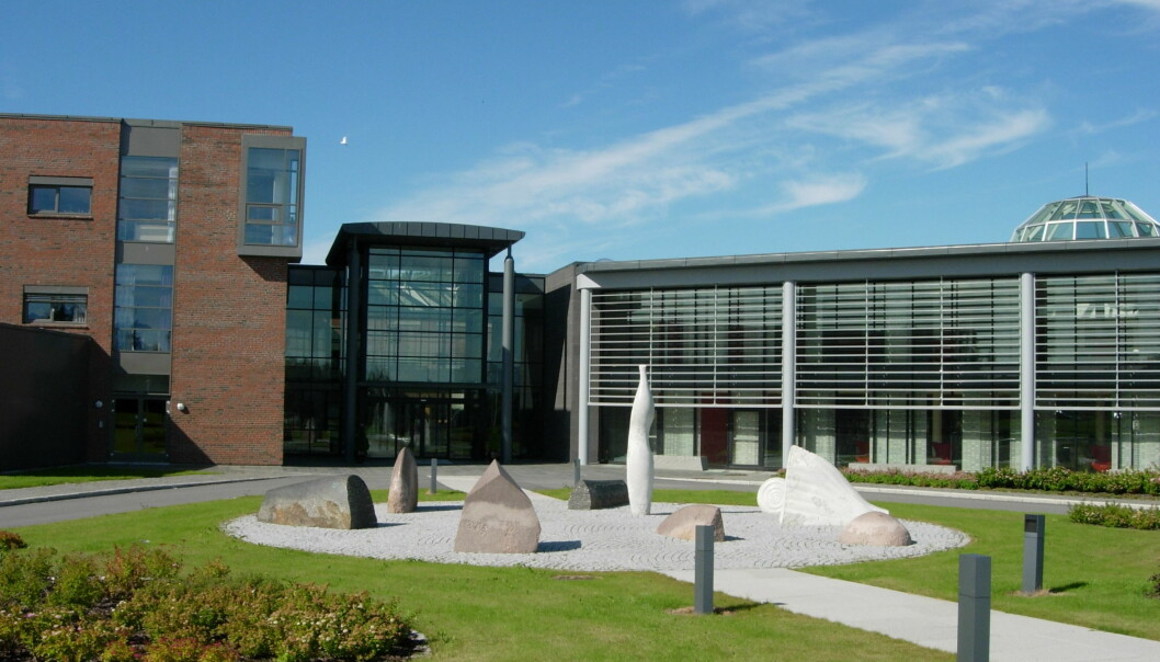 Høgskolen i Nesna ble en del av Nord universitet 1. januar 2016. Illustrasjonsfoto fra Nord universitet studiested Bodø. Foto: Lars Røed Hansen/Nord universitet