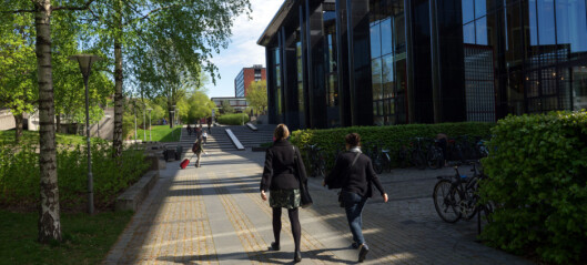 Hvorfor mister universitetet flinke folk med doktorgrad?