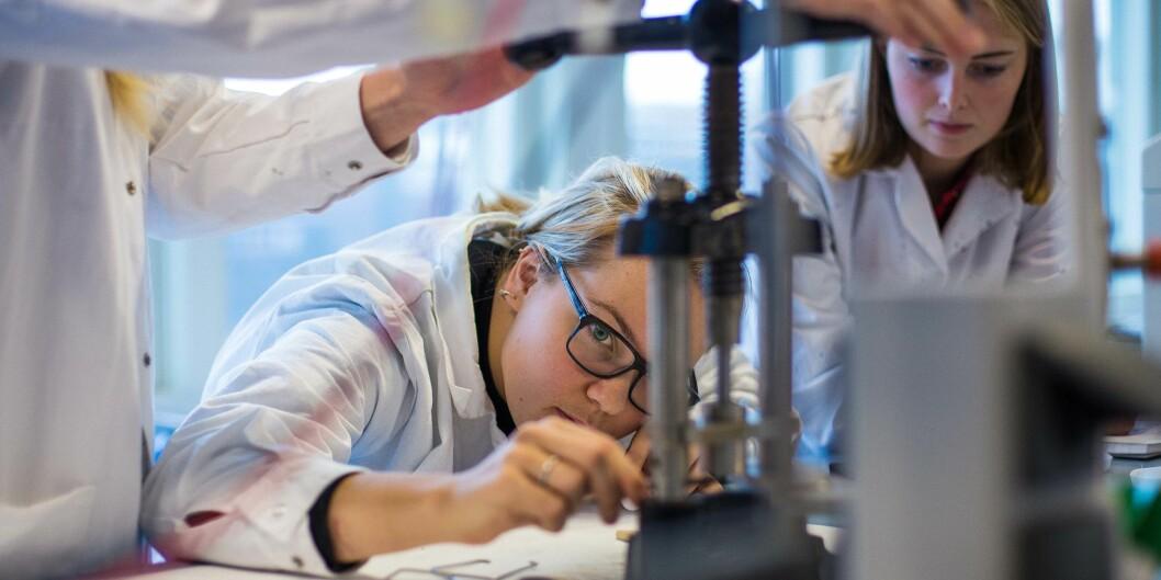 Bioteknologi- og kjemiingeniørstudentene ved Høgskolen i Oslo og Akershus bruker mye tid i laboratorium. Foto: Siri Ø.Eriksen