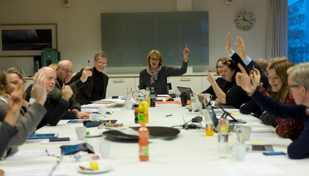 Ja til permanent studentombud fra høgskolestyret på Høgskolen i Oslo og Akershus(HiOA). Foto: Ketil Blom Haugstulen