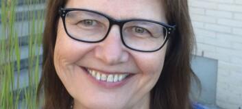 Lise Kulbrandstad ny styreleiar
