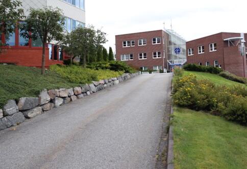 Jeg melder meg som rektorkandidat i Molde