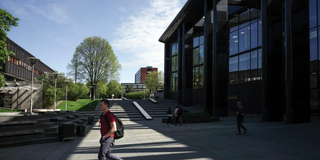 """Universitet i Oslo henter mest penger gjennom <span class=""""caps"""">EU</span>-programmet Horisont 2020 av de norske universiteter og høgskoler. Foto: KetilBlom"""