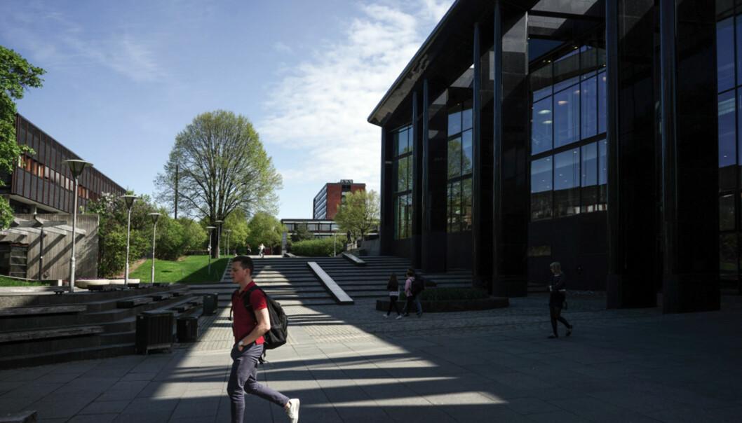 Universitet i Oslo henter mest penger gjennom EU-programmet Horisont 2020 av de norske universiteter og høgskoler. Foto: KetilBlom