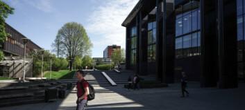 UiO henter mest penger, NTNU deltar i flest prosjekter
