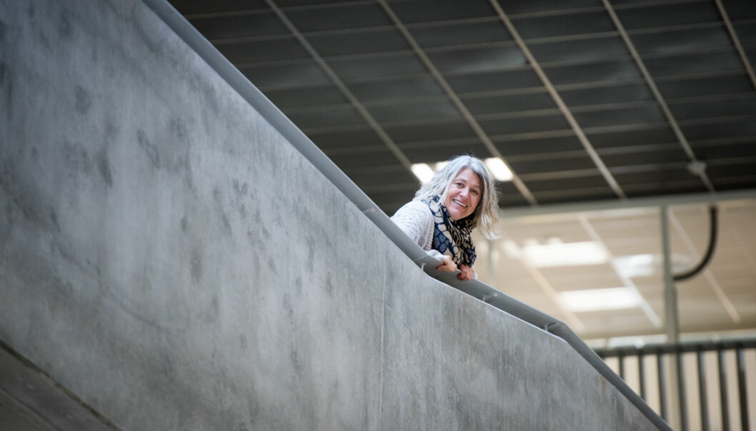 Instituttleder Bente Monica Aakre ved Høgskolen i Sørøst-Norge skal koordinere prosjektet Oculus, som er et av seks prosjekter med norsk deltakelse som har fått EU-midler gjennom programmet for kapasitetsbygging iErasmus+. Foto: Skjalg Bøhmer Vold