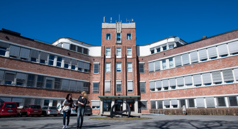 Skal granske uredelighet ved Høgskolen i Østfold