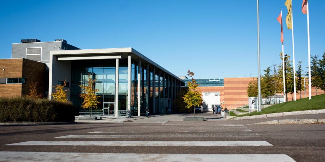 Høgskolen i Buskerud og Vestfold, campus Bakkenteigen Foto: Skjalg Bøhmer Vold