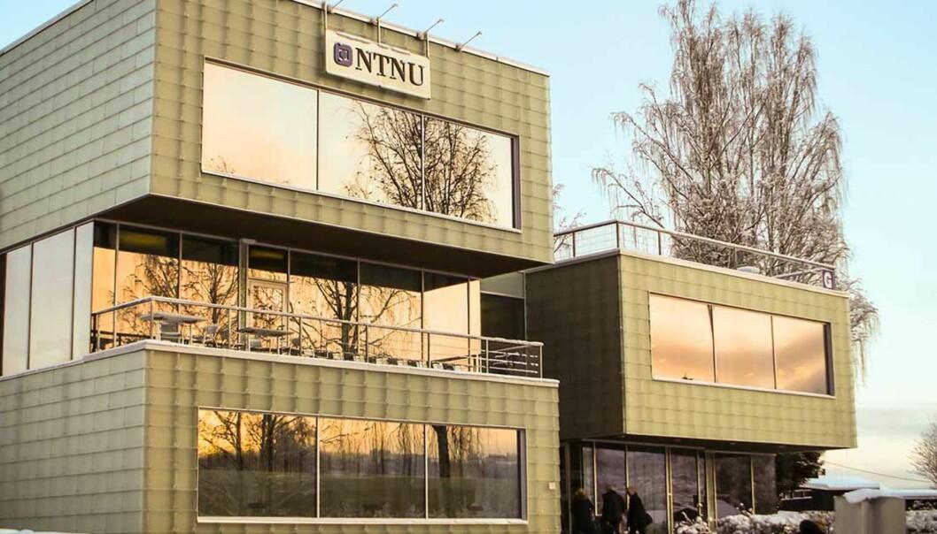 """En emneansvarlig ved NTNU Gjøvik """"glemte"""" kvalitetssjekken på nynorsken før eksamensoppgavene ble delt ut. Foto: NTNU/Marte HeleneFoss"""