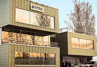 Hjelpeløs nynorsk på NTNU