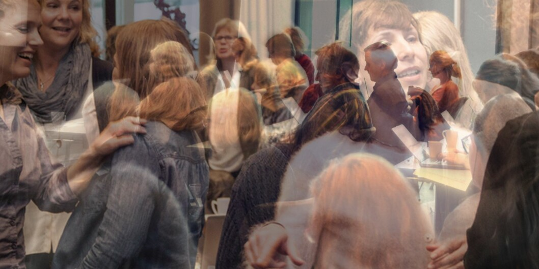 """Den ene delen av nye Høgskolen i Sørøst-Norge har en kvinnesatsing for å bedre kjønnsbalansen i faglige toppstillinger og forskningsledelseved høgskolen, gamle Høgskolen Buskerud/Vestfold. Illustrasjon/fotomontasje: Åsne Håndlykken-Luz og Knut Jul Meland, <span class=""""caps"""">HSN</span> Foto: Picasa"""