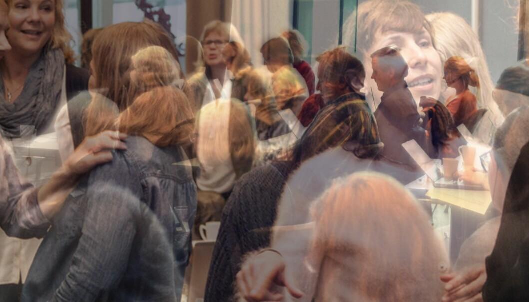 Den ene delen av nye Høgskolen i Sørøst-Norge har en kvinnesatsing for å bedre kjønnsbalansen i faglige toppstillinger og forskningsledelseved høgskolen, gamle Høgskolen Buskerud/Vestfold. Illustrasjon/fotomontasje: Åsne Håndlykken-Luz og Knut Jul Meland, HSN Foto: Picasa