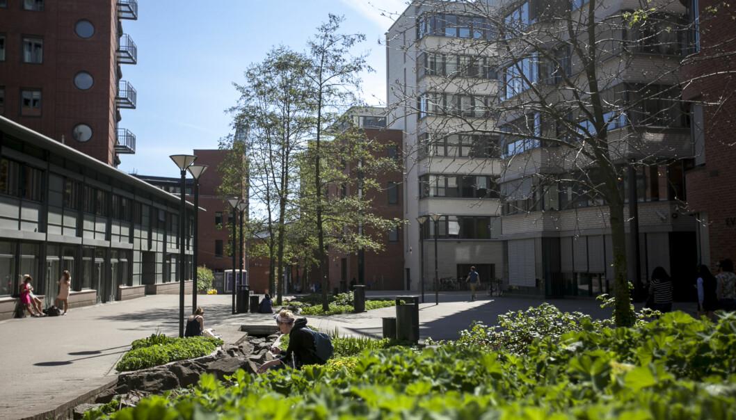 Debatten om hvorvidt Høgskolen i Oslo og Akershus skal bli et universitet ruller videre. Her fra høgskolens campus i Pilestredet i Oslo. Foto: Nicklas Knudsen
