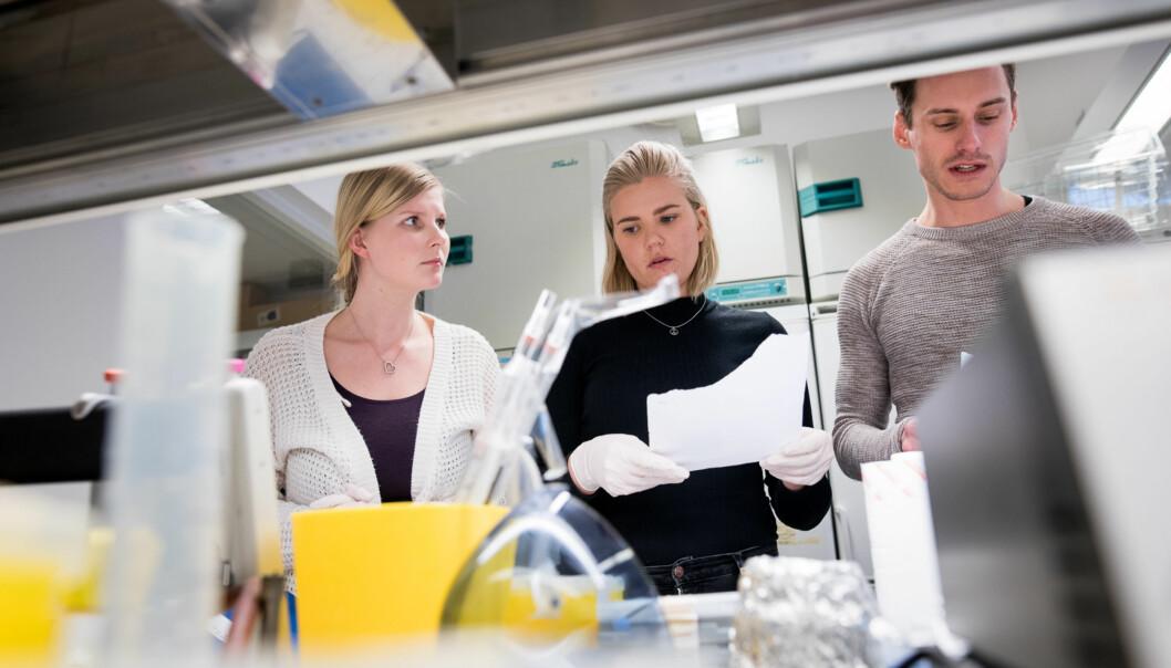 Hjerneforskerne Edvard I. Moser og May-Britt Moser har gjennom to tiårsperioder ledet hvert sitt Senter for fremragende forskning ved NTNU. Illustrasjonsfoto. Foto: Skjalg Bøhmer Vold