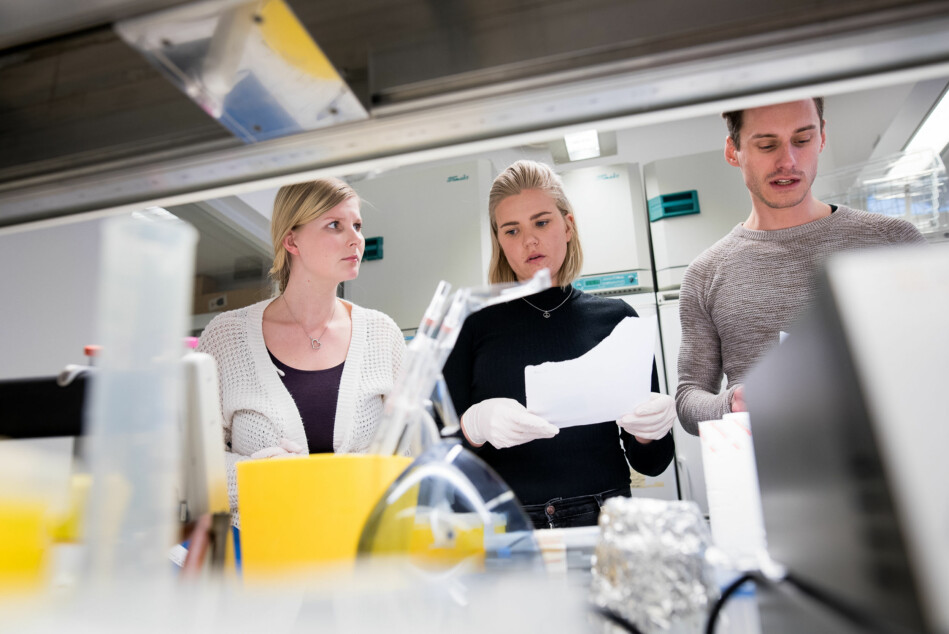 66 prosent av mannlige forskere har vært involvert i minst et internasjonalt samarbeids, mens bare 56 prosent av kvinnelige forskere har det samme. Forskjellen ligger i kjønnsbalansen mellom fagfelt, menere NIFU-forskere. Foto: Skjalg Bøhmer Vold