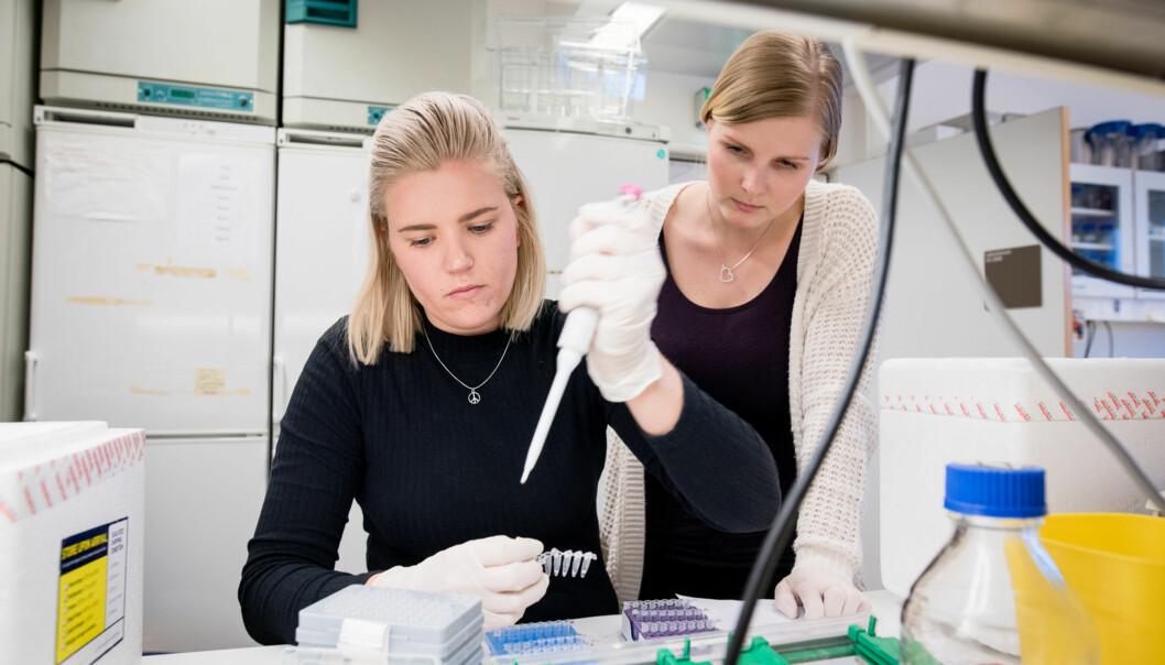 Biotekonlogi og kjemi-studentene Line Mykland og Renée Ellefsen tror gutter stryker mer enn jenter fordi de er merukonsentrerte. Foto: Skjalg Bøhmer Vold