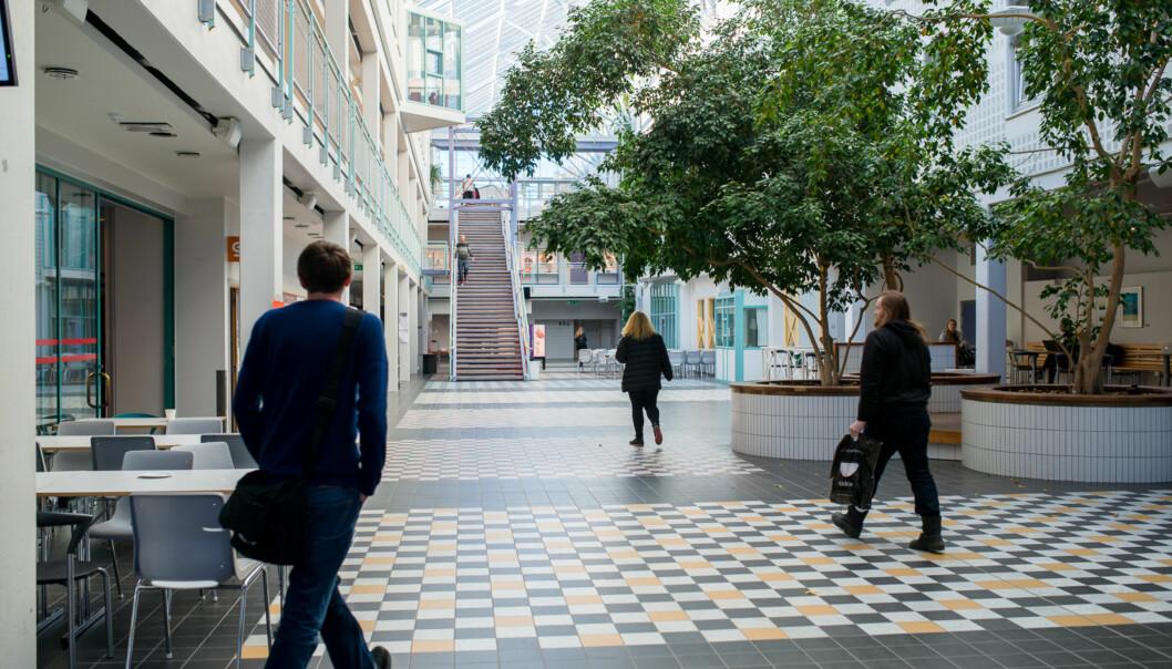 Fra campus i Tromsø, UiT Norges arktiske universitet. Foto: Skjalg Bøhmer Vold
