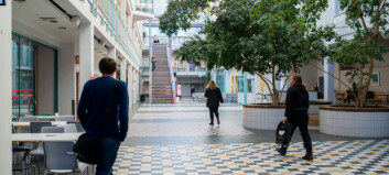 Musikkonservatoriet og Kunstakademiet i fare
