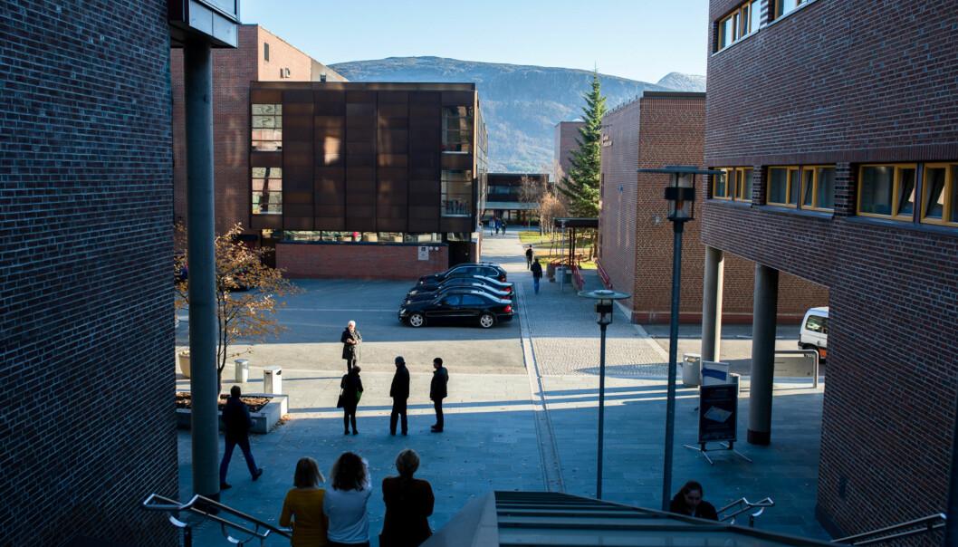 Ole Kristian Losvik svarer i dette innlegget rektor ved Universitetet i Tromsø, Anne Husebekk. Illustrasjonsbilde av Campus Tromsø.  Foto: Skjalg Bøhmer Vold