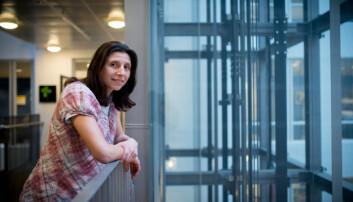 Instituttleder forteller om populære IT-studenter, men at internasjonale studenter har det tøffere med å få jobb