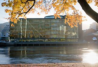 Ein smitta student i Drammen