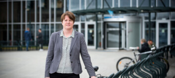 Miljøet i Harstad får midlertidig fakultet