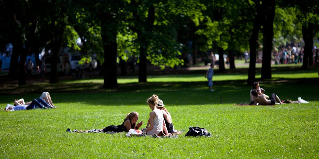 Mange muligheter i Oslos parker. Sjekk dem ut ihelga.