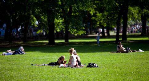 Oslos beste studentparker