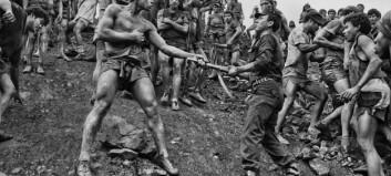 Salgado viser død, natur, bestialitet, liv og kraft