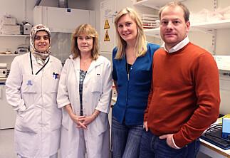 Prorektor-kandidater med stor forskningspublisering
