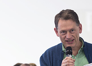Tidlegare rektor vikar som direktør
