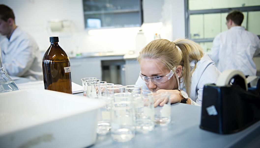 Flere unge lovende norske fosrkere har nådd opp i konkurransen om prestisjerungt EU-stipend. Foto: Ketil Blom Haugstulen