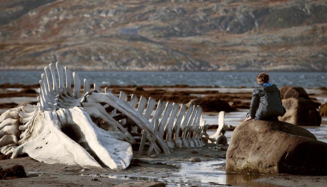 Ett av de mest kjente og brukte bildene fra den russiske filmen Leviathan som har Norgespremiere i dag. FOTO:Arthaus