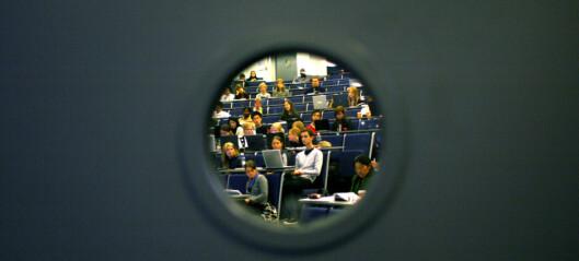 Læringsmiljø utvikles lokalt, politisk og organisatorisk