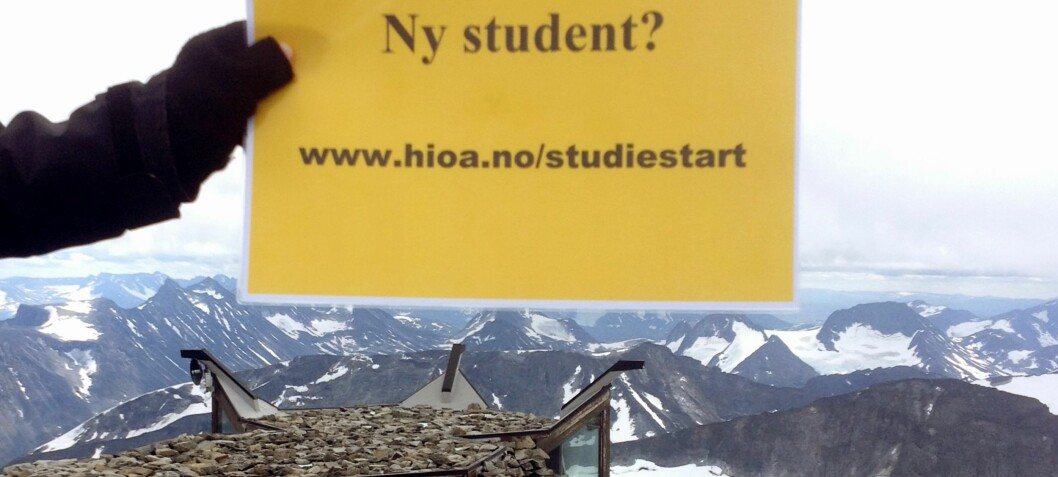 Gul plakat om studiestart på Galdhøpiggen